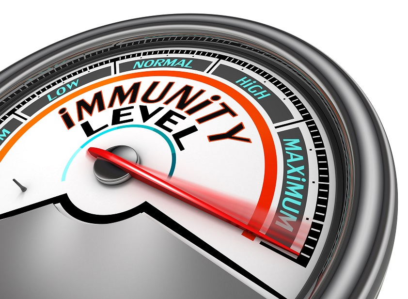 How to Boost Your Immunity Quickly and Stay Healthy Long Term